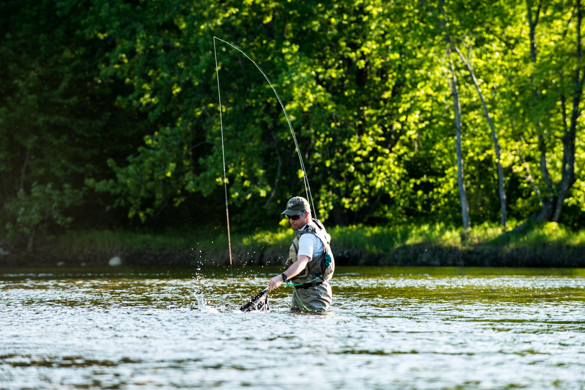 Fly fisherman netting a trout on the Androscoggin River, New Hampshire