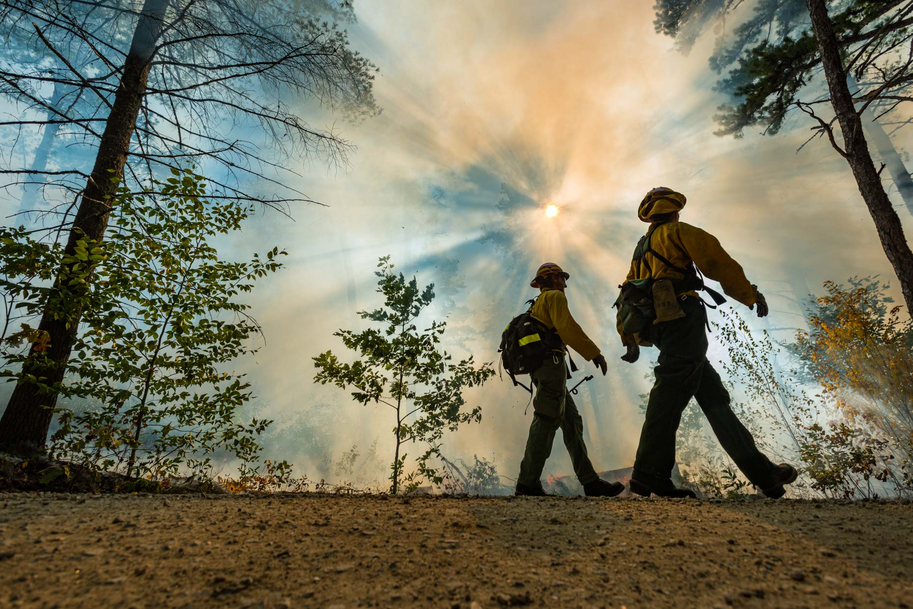 Wildland Fire fighters during a prescribed burn