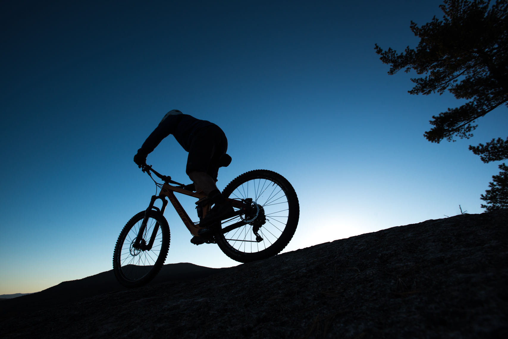 Mountain biker in the evening sun.