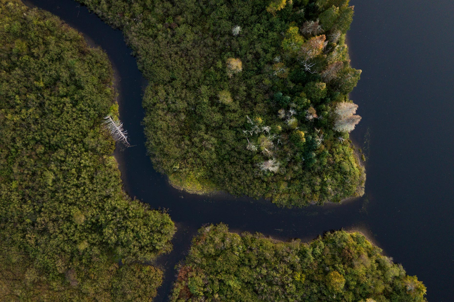 Aerial Photograph of Bog Brook flowing into the Androscoggin RIver