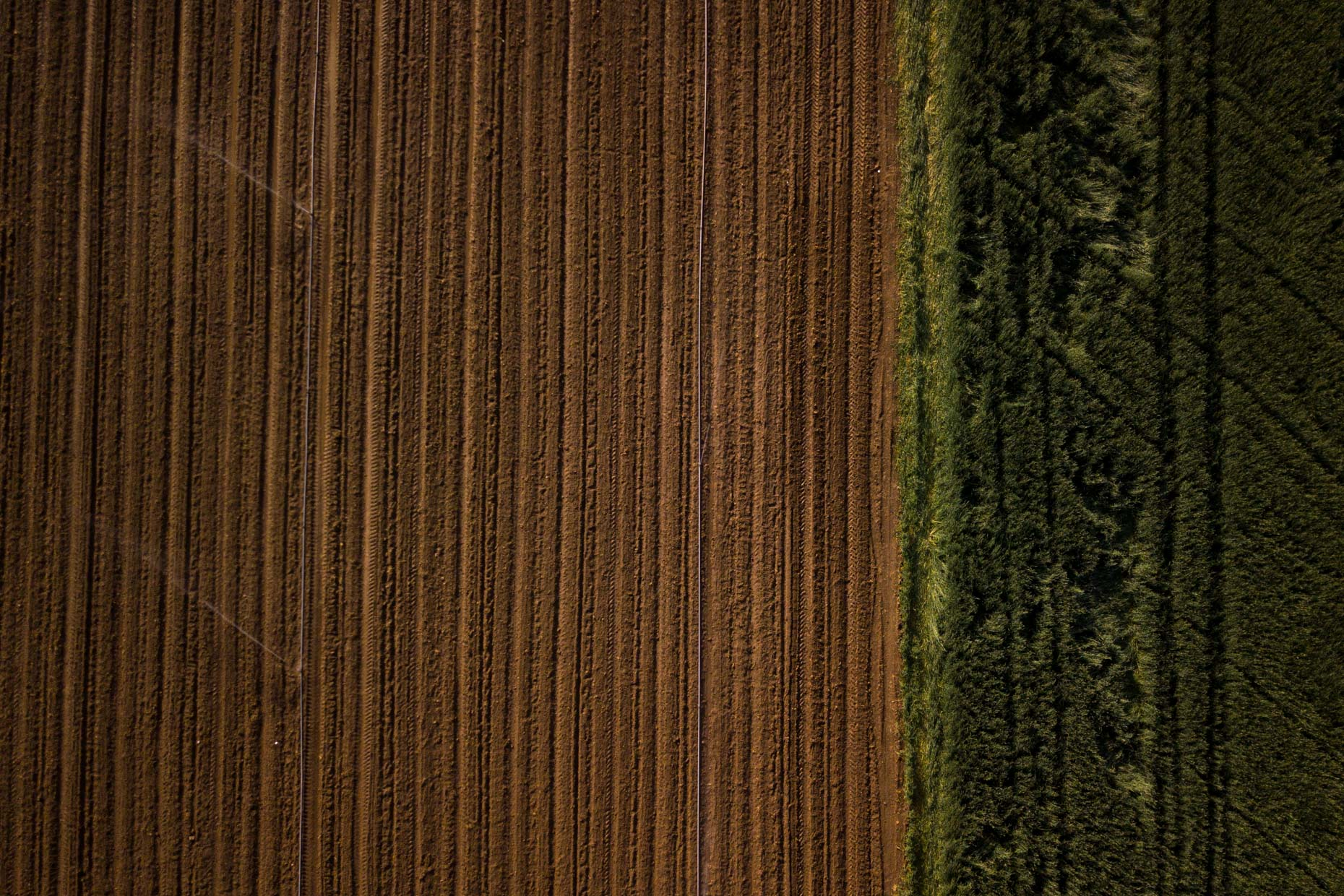 Aerial photograph of irrigation on a farm field